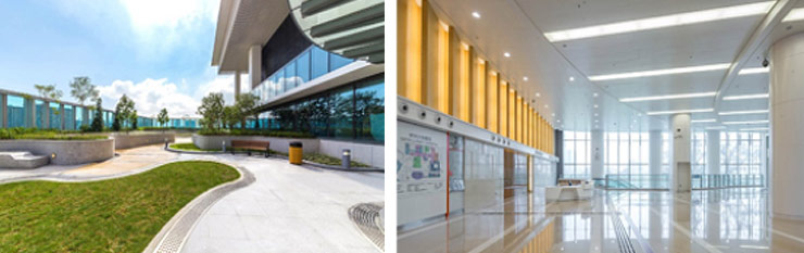 Daylight and Views to nature are predominant in Hong-Kong Queen Elizabeth Hospital Ambulatory Care Extension,